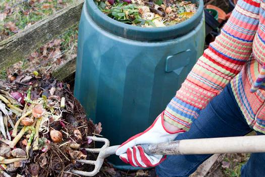 How to Start Composting in 5 Easy Steps