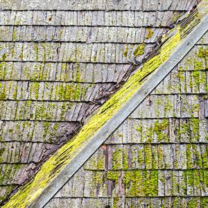 Asphalt-shingle-roofing-algae-resistance-2